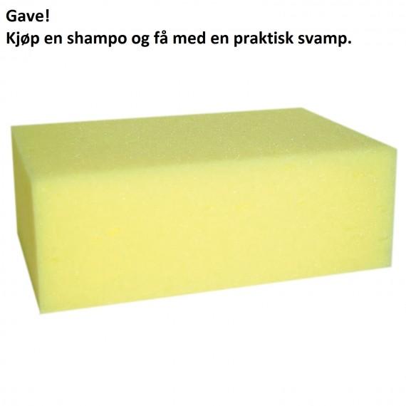 Gave! Kjøp Shampo og få med svamp