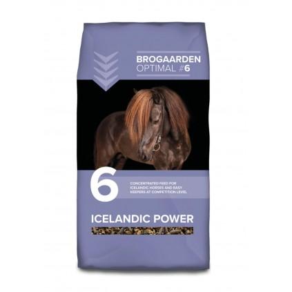 Icelandic Power fra Brogården