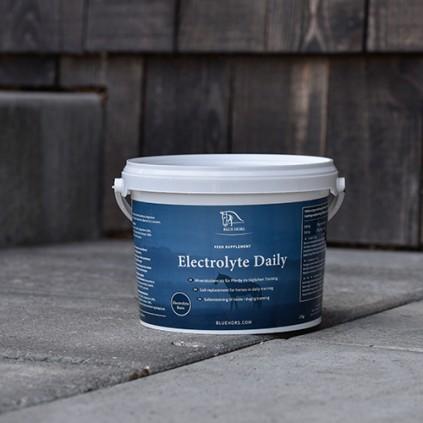 Electrolyte Daily fra Blue Hors